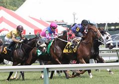 2018 Pimlico Race track (84) (maskirovka77) Tags: pimlico dirt mare race racehorse threeyearold turf yearling