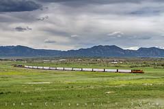 The Lafayette Branch (Colorado & Southern) Tags: bnsfrailway bnsf emdgp392 emdsd402 bucklocal local buckwheatbranch trains train railfanning railroad railfan railway railroads railroading rockymountains rail rr railroadtrack colorado coloradorailroads coloradotrains locomotive locomotives emd