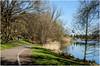 2248-PASEO MATUTINO EN SEEPARK (PARQUE DEL LAGO) FREIBURG (--MARCO POLO--) Tags: lagos rincones ciudades parques