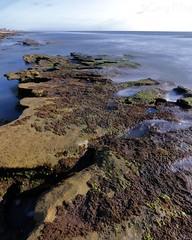IMG_0226 beach 15 sec f20 w (grilee3) Tags: marineland beach florida coquina rocks ocean atlanticshore