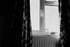 George's window (tercrossman87) Tags: canon 7 ilford hp5 400 1600 push ilfotec microphen stock film home development plustek 8200i 35mm 17 ultron voigtlander