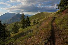 DSC01075 (kyleddsn) Tags: hiking utah ogden spring
