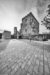 Hambacher Schloß b&w (rainerneumann831) Tags: hambacherschlos bw gebäude architektur monochrome blackwhite blackandwhite ©rainerneumann landschaft