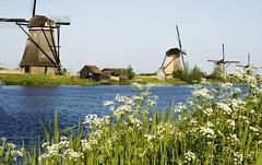 kinderdijk (my lala) Tags: kinderdijk windmill mill wind netherlands