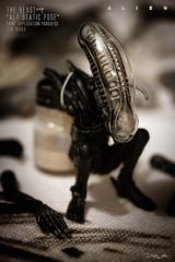 ALIEN-297-SQUATTING-ALIEN (sith_fire30) Tags: alien aliens nostromo xenomorph isolation giger ridley scott hive sculpting painting queen egg chestburster sculptor sithfire30 dayton allen art artist miniature