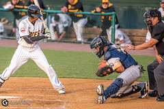 BeesvsRevs-38 (doublegsportsimages) Tags: newbritainbees york revolution baseball