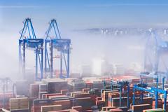 Neblina en el puerto (Leandroide_m) Tags: puerto valparaiso quinta región chile containers container grua cerros valpo