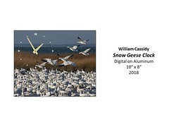 """Snow Geese Clock • <a style=""""font-size:0.8em;"""" href=""""https://www.flickr.com/photos/124378531@N04/41697829582/"""" target=""""_blank"""">View on Flickr</a>"""