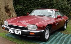 J783 GAL (Nivek.Old.Gold) Tags: 1991 jaguar xjs 40 hh