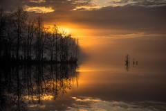 Sumuinen auringonlasku - Foggy sunset (Karppa68) Tags: canonfd80200f4l canonfdl canon fd sony a7ii sunset foggy sumuinen auringonlasku water lake fog sumu padasjoki finland päijäthäme suomi kevät spring järvi