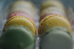 a little taste of paris... (Jess Feldon) Tags: macarons macro dof depth yellow mellowyellow colourfusion pastels jessfeldon lookslikefilm pretty