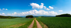 Field Panorama (Bulda9) Tags: plant colorful village line harvest hills outdoor rapeseed abstract beautiful sky light natural nature farm pattern rape green background rural spring landscape agriculture field south czech panorama