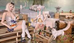 Everyone Needs a Personal Wonderland (Duchess Flux) Tags: enchantment fameshedblush gachagarden entice prtty skinnery catwa warpaint shinystuffs 1313 chicchica wasabipills queenofink asteroidbox artisanfantsy jian aliceinwonderland secondlife sl