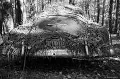 Old Car City (dpsager) Tags: bw chevrolet dpsagerphotography f1n film ga georgia kodak oldcarcity tmax100 junkyard