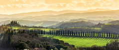 Chiusure (SLpixeLS) Tags: italy italie tuscany toscane toscana chiusure landscape paysage soil terre tree arbre cypress cyprès sky ciel sunset coucherdesoleil panorama pano platinumheartaward bestcapturesaoi
