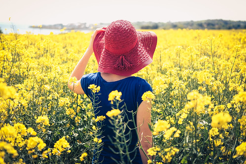 Rapeseed Fields Girl