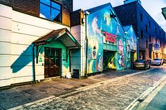 BELFAST STREET ART [PHOTOGRAPHED 15 MAY 2018]-140117 (infomatique) Tags: urbanculture streetart belfast may 2018 williammurphy infomatique fotonique ireland uk northernireland sony a7riii graffiti urbanexpression