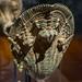 naga-shaped palanquin fitting 02 - Beyond Angkor - Cleveland Museum of Art