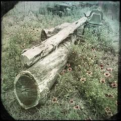 "Mason, TX (woody lauland) Tags: ȯggl hipstaprint hipstamatic bell wildflowers logs farm rural tx ""masontx"" texas mason"