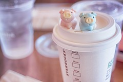 142/365 : Starbucks Coffee (♥GreenTea♥) Tags: pig eraser pigeraser pigs erasers pigerasers bluepig pinkpig blue pink iwako iwakoeraser iwakoerasers イワコー t1i canon canont1i canont1irebel canonrebel eos canoneosrebelt1i ef40mmf28stm canonef40mmf28stm098ft03mpancakelens canonef40mm canonef pancakelens googlenikcollection nikcollection colorefexpro viveza hdrefexpro 365 photoaday pictureaday project365 365toyproject oneobject oneobject365daysproject 365the2018edition 3652018 day142365 365day142 day142 project365142 22may18 project36505222018 05222018 odc ourdailychallenge iveneverphotographedoneofthesebefore odciveneverphotographedoneofthesebefore ourdailychallengeiveneverphotographedoneofthesebefore starbucks starbuckscoffee cup coffeecup coffee flatwhite