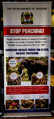 2017.06.29.7255 Smuggler Warning (Brunswick Forge) Tags: 2017 summer spring tanzania africa safari grouped fall winter