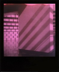 Layers and Shades • PolaroidWeek   Day 3/1 (o_stap) Tags: keepfilmalive believeinfilm ishootfilm impossibleproject polaroidweek roidweek polaweek duochrome polaroid600 polaroid