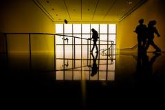 Sundowns Are Golden Then Fade Away (Thomas Hawk) Tags: america julia juliapeterson manhattan moma museum museumofmodernart nyc newyork newyorkcity usa unitedstates unitedstatesofamerica mrsth spouse wife us fav10 fav25 fav50