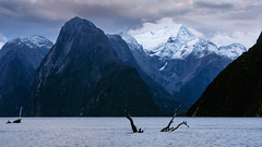 Classic Milford sound (milo42) Tags: 2014 new zealand mountain httpwwwloveoflandscapecom httpwwwchrisnewhamphotographycouk south island boat location milford lake sound milfordsound newzealand southisland southland nz