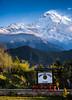 PRMM3177-Pano.jpg (martinpmayer) Tags: sadhu street himalaya sagarmatha berge fishtail blue tourismus pokhara kathmandu trekking people nepal mounteverest colors sightseeing mountains tourism blau farben
