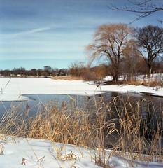 Lake Hiawatha (John's Vintage Cameras) Tags: rollei tlr twinlens vintage film analog 6x6 square waistlevelfinder xenar minnesota madeingermany