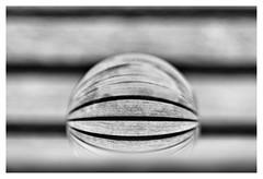Spherical bench (leo.roos) Tags: noiretblanc bench bank lensball crystalball roussel12735 a7 rousselparisanastigmatprojectiontraiteseriepf127mmf35 projectorlens projectionlens day127 dayprime dayprime2018 dyxum challenge prime primes lens lenzen brandpuntsafstand focallength fl darosa leoroos xif