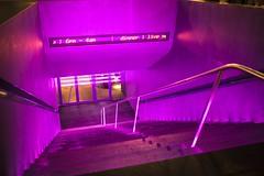 short story in pink (ignacy50.pl) Tags: cityscape stairs door entrance pink light night nightlights street vienna minimal