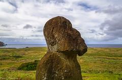Tukuturi / Тукутури (Vladimir Zhdanov) Tags: travel chile polynesia rapanui easterisland sky landscape ocean cloud ranoraraku tukuturi moai sculpture ancient field grass