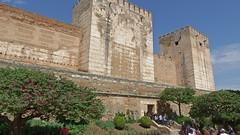DSCF5539 Alcazaba de la Alhambra, Granada (Thomas The Baguette) Tags: granada spain granadaspain espagne espana alhambra nesrid nesridpalace patiodelosleones lionfountain comares moorish fountains architecture gardens machuca alcazaba