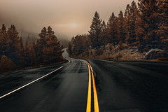 The Road to Peace (miss.interpretations) Tags: road street path fog mist trees treeline mountains wetroad storm thunderstorm rain raindrops snowflakes overcast cloudy gloomy peace solitude silence colorodo rachelbrokawphotography lifeincolorado rmnp rockymountainnationalpark canon6dmarkii haze happiness findyourjoy contentment blessedoverstressed 2018 landscape photography exploretocreate windingroads f50 landscapephotography nature naturephotography moody estespark