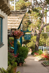 Carmel-by-the-Sea (AdrienG.) Tags: carmel by sea coastal road state route coast cotiere highway 1 one ocean pacifique pacific pier ponton californie california usa etats unis ameriques united states america アメリカ合衆国 sony rx100 iii mark m 3 ソニ