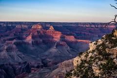 Canyon Sunset (BFS Man) Tags: arizona grandcanyon k3 nationalpark pentax vacation cloud sky sunset tree