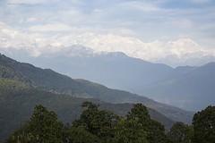 Dhampus (Jean Ka) Tags: approved nepal népal dhampus jungle vegetation mountains montagnes berge gebirge range wandern trek trekking randonnée green vert grün white weis blanc trees arbres bäume forët urwald forest