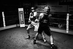 27091 - Hook (Diego Rosato) Tags: boxe boxing pugilato boxelatina ring reunion bianconero blackwhite rawtherapee nikon d700 2470mm tamron matchc pugno punch hook gancio