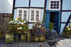 Fachwerk (Jos Mecklenfeld) Tags: flowers blumen bloemen vakwerkhuis fachwerkhaus halftimberedhous teutoburgerwald deutschland duitsland sonya6000 sonyilce6000 selp1650 sonyepz1650mm tecklenburg northrheinwestfalen germany de