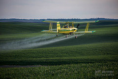 (jeffzenner) Tags: view landscape canola airplane spraying crop image naaa outdoor aerial aerialspraying ag photos stock picture aviation photography farming engine seed fertilizer yellow wing wheat palouse spray herbicide gulfstream superbplus turbine grumman applicator prairie schweizer northwest fly cropdusting biplane agriculture pnwaaa fertilizing duster photo cropdust plane agcat dust idaho nezperce farm fungicide aerialapplicator pesticide