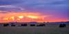 A Elphant sunset at the wonderful Masai Mara Kenia! (Markus Jaschke) Tags: afrika kenia mara masai