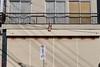 Store Front I (gullevek) Tags: building culture fujixt1 fujifilm fujinonxf35mmf2rwr japan newyear otaku shadow things tokyo tokyoto window yaguchi お正月 大田区 建物 影 文化 日本 東京 東京都 物 矢口 窓 ōtaku tōkyōto