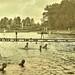 Swimming at Silver Lake adjacent to barracks at Interlaken army Training Camp, Rolling Prairie, IND ca 1918 2 NARA165-WW-524G-007
