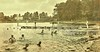 Swimming at Silver Lake adjacent to barracks at Interlaken army Training Camp, Rolling Prairie, IND ca 1918 2 NARA165-WW-524G-007 (SSAVE over 10 MILLION views THX) Tags: usarmy camps ww1 worldwari 1918