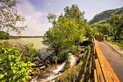 A nice bike path (a7m2) Tags: danube greifenstein loweraustria natur fluss erholung wandern wassersport boote schiffe