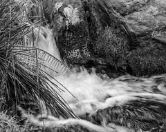 Brook (malcbawn) Tags: brook derbyshire crowdenclough plungepool landscape peakdistrict uk icicles