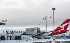 qantas for one world (pbo31) Tags: bayarea california nikon d810 color may 2018 spring boury pbo31 sanfranciscointernational sfo airport airline travel plane sanbruno sanmateocounty aviation flight departure white overcast 747 boeing service qantas sydney delta freight holding oneworld red tail
