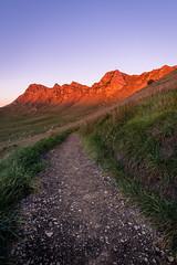 Morning walk on the Sunrise Track (ajecaldwell11) Tags: track xe3 hawkesbay newzealand ankh dawn orange sky tematapeak sunrise caldwell fujifilm light