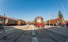 Porte aperte a Spezia Migliarina (Gabriele Gussoni) Tags: treno storico e428 e636 e645 castano fondazione fs trenitalia ferrovie stato isabella